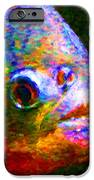 Piranha IPhone Case by Wingsdomain Art and Photography