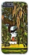 Plantation Oil IPhone Case by Steve Harrington