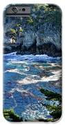 Point Lobos IPhone Case by Ron White
