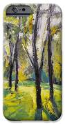 Pontefract Park At Sunset IPhone Case by Michael Creese
