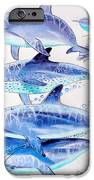 Porpoise Play IPhone Case by Carey Chen
