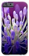 Praise IPhone Case by Holly Kempe