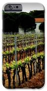 Provence Vineyard IPhone 6s Case by Lainie Wrightson