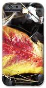 Red And Yellow IPhone Case by John Rizzuto