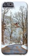 Red Rock Winter Road Portrait IPhone Case by James BO  Insogna