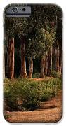 Returning Home IPhone Case by Mary Jo Allen