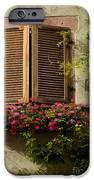 Riquewihr Window IPhone Case by Brian Jannsen