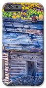 Rocky Mountain Rural Rustic Cabin Autumn View IPhone Case by James BO  Insogna