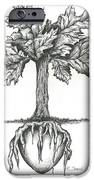 Roots Of The Heart IPhone Case by Karen Sirard