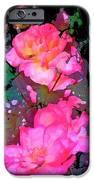 Rose 193 IPhone Case by Pamela Cooper