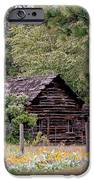 Rustic Cabin In The Mountains IPhone Case by Athena Mckinzie