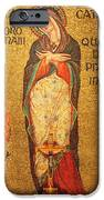 Saint Catherine Of Alexandria Altar IPhone Case by Philip Ralley