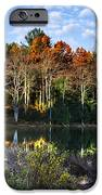 Scenic Autumn At Oakley's IPhone Case by Christina Rollo