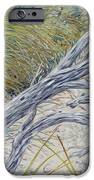 Sculpted By The Wind IPhone Case by Danielle  Perry