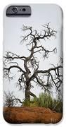 Sedona Landscape Vii IPhone Case by Dave Gordon