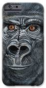 Silverback IPhone Case by Janis  Cornish