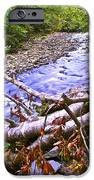 Smoky Mountain Stream Two IPhone Case by Frozen in Time Fine Art Photography