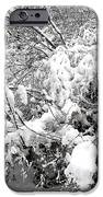 Snow Scene 4 IPhone Case by Patrick J Murphy
