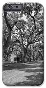 Southern Lane Monochrome IPhone Case by Steve Harrington