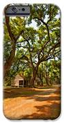Southern Lane Paint Filter IPhone Case by Steve Harrington