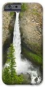 Spahats Falls Waterfall In Wells Gray Provincial Park IPhone Case by Elena Elisseeva