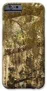 Spanish Moss On Live Oaks IPhone Case by Christine Till