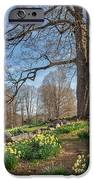 Spring Path IPhone Case by Bill Wakeley