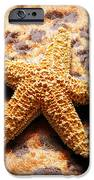 Starfish Enterprise IPhone Case by Andee Design