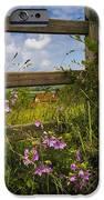 Summer Breeze IPhone Case by Debra and Dave Vanderlaan