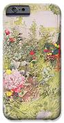 Summer In Sundborn IPhone Case by Carl Larsson