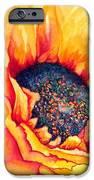 Sunflower Joy IPhone Case by Janine Riley