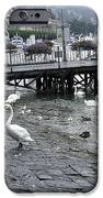 Swans And Ducks In Lake Lucerne In Switzerland IPhone Case by Ashish Agarwal