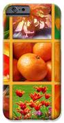 Tangerine Dream Window IPhone Case by Joan-Violet Stretch