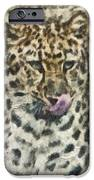 That Was Delicious IPhone Case by Trish Tritz