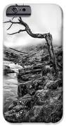 The Accusing Finger IPhone Case by John Farnan