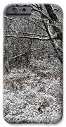 The Beauty Of Winter IPhone Case by Aimee L Maher Photography and Art Visit ALMGallerydotcom