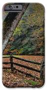 The Country Road IPhone Case by Paul Ward