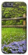 The Forest Is Calling IPhone Case by Debra and Dave Vanderlaan