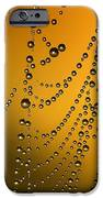 The Gold Web IPhone 6s Case by Odon Czintos