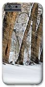 The Noreaster IPhone Case by JC Findley