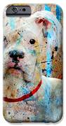The Painter's Dog IPhone Case by Judy Wood
