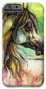 The Rainbow Colored Arabian Horse IPhone Case by Angel  Tarantella
