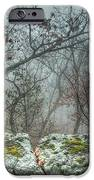 The Sacrificial Altar Of Prometheus IPhone Case by William Fields