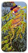 The Sea Hatter IPhone Case by KJ Swan