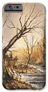The Secret Stream IPhone Case by Roland Byrne