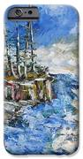 The Storm IPhone Case by Beverly Livingstone