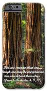 The Strength Of Two - From Ecclesiastes 4.9 And 4.12 - Muir Woods National Monument IPhone Case by Michael Mazaika