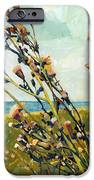 Thistles On The Beach - Oil IPhone Case by Michelle Calkins