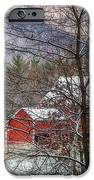 Through The Trees IPhone Case by Stephanie Calhoun