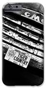 Tiger Country IPhone Case by Scott Pellegrin